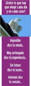 ideas_32